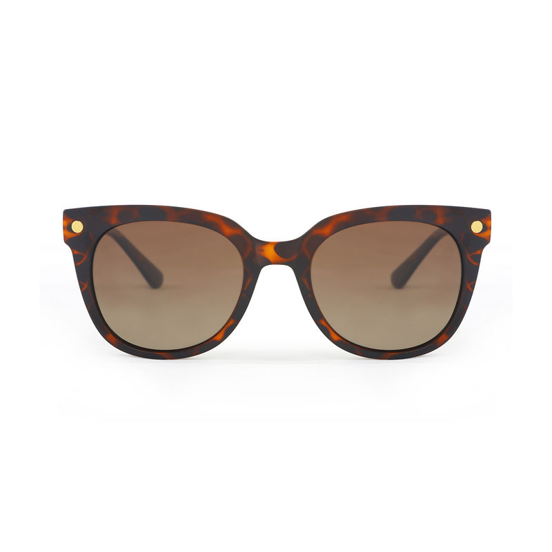6aba105e44 Marie Claire MC003 C3 Wayfarer Polarized Sunglasses - Brown at Nykaa.com
